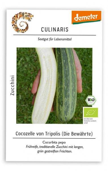 Culinaris Zucchini Cocozelle von Tripolis, 12 Korn