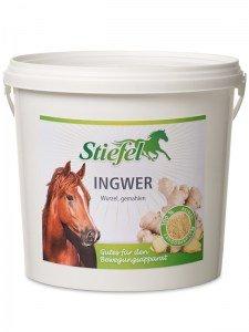 Stiefel Ingwer gemahlen für Pferde, 1 kg
