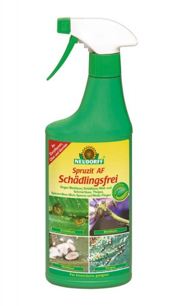 Neudorff Spruzit AF Schädlingsfrei, 500 ml