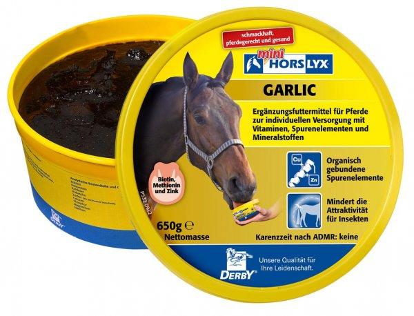 Derby® Horslyx Leckmasse für Pferde, Garlic, 650 g