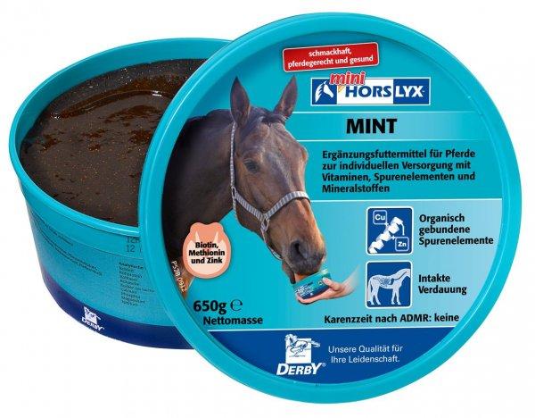 Derby® Horslyx Mint Leckstein für Pferde, 650 g